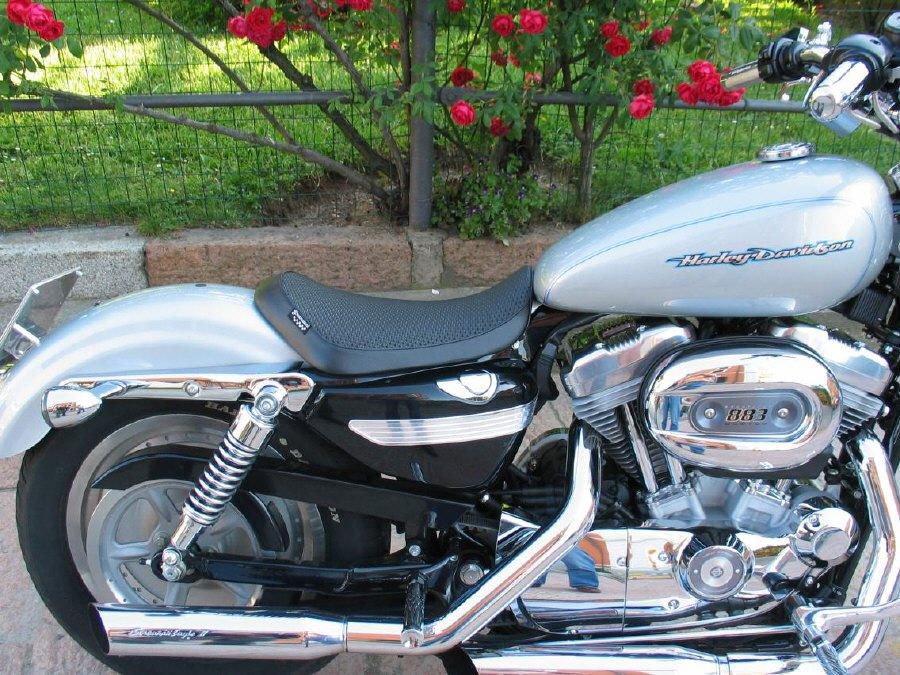 Custom Harley Davidson Sales Uk