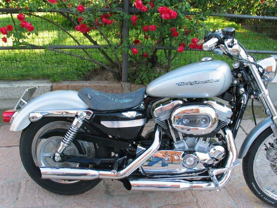 Granucci Gel Seat Fantasy Python Solo Seat Harley Davidson